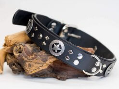 The Law Dog Dog Collar Shown in Black