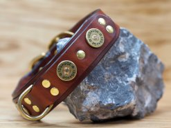 Custom leather dog collar for hunting dogs